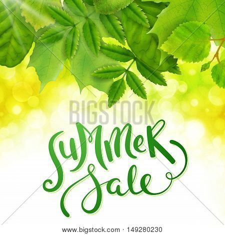 Summer sale background with green leaves, vector illustration