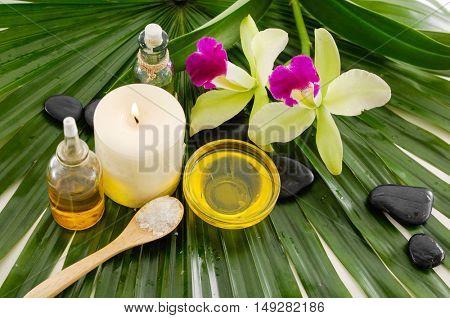 Spa setting on palm leaf