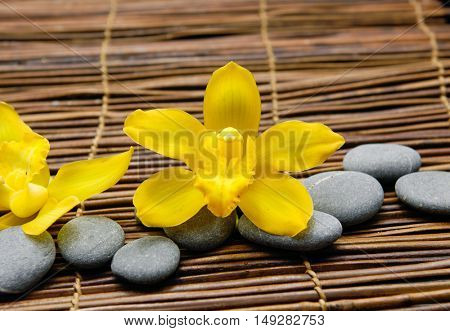Yellow orchid with gray stones on mat,