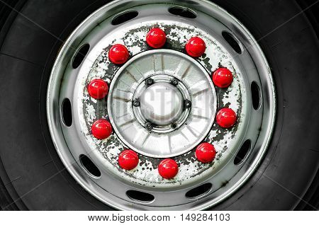 Bus wheel with color nut on disk