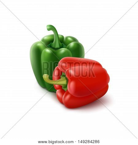 Two Vector Colored Green and Red Sweet Bulgarian Bell Peppers, Paprika Isolated on White Background