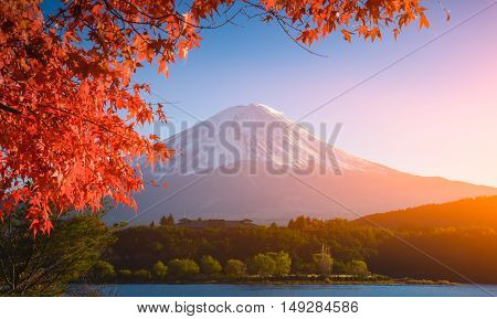 Red Frame Of Maple Leaf And Mt.fuji..