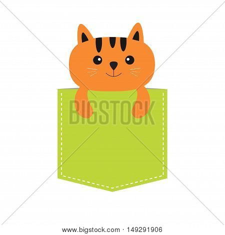 Cat in the pocket. Cute cartoon character. Orange kitten kitty. Dash line. Pet animal collection. T-shirt design. White background. Isolated. Flat Vector illustration