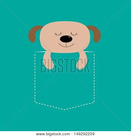 Bear sleeping in the pocket. Cute cartoon character. Dash line. Forest animal collection. T-shirt design. Blue background. Isolated. Flat Vector illustration