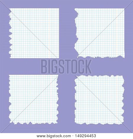 Ripped Sheets of School Copybook in a Cage. Vector Illustration.