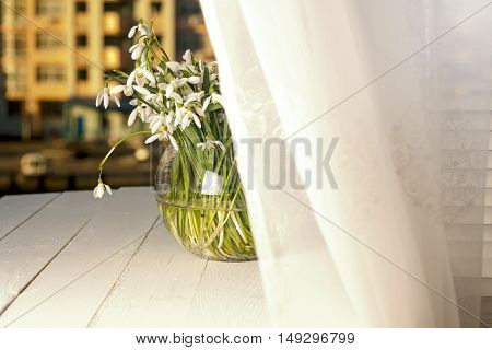 the sun on the window sill delicate bouquet in glass vase.