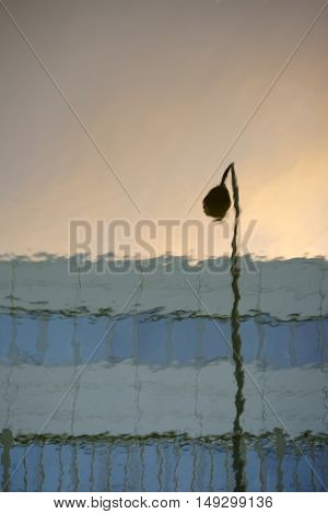 The reflection of a street lamp and a modern office building in a body of water during sunset.