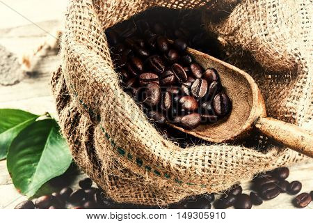 Roasted coffee beans in burlap sack with old wooden scoop. Close up