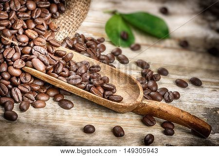 Roasted coffee beans with old wooden scoop. Closeup