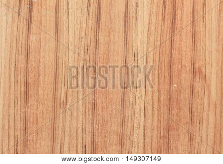 Wood  texture  nature surface background beautiful and space for text