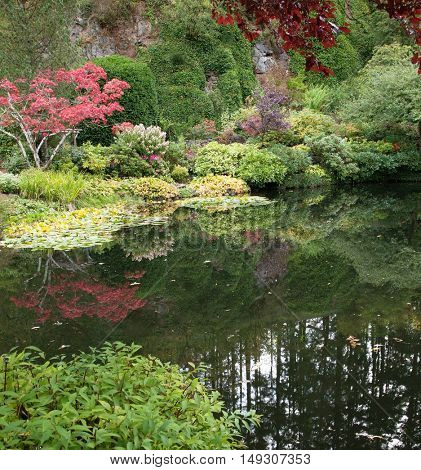 In small pond reflected trees and flowers. Delightful landscaped and floral park Butchart Gardens on Vancouver Island