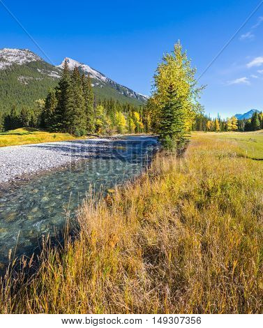 Sunny autumn day in the Rocky Mountains of Canada. The drying-up stream in the mountain valley park Banff