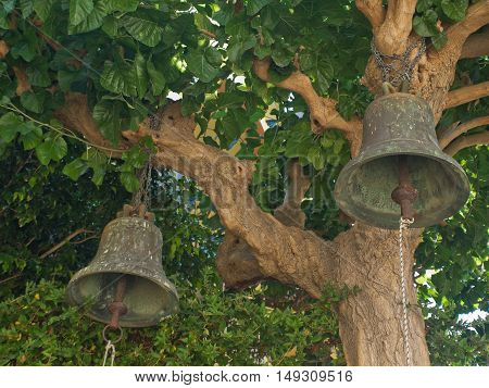 vintage bell attached to the branches of trees
