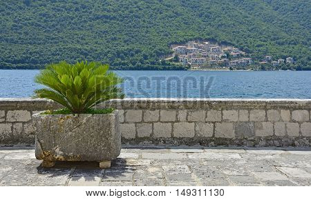 An old stone wall with a plant on Our Lady of the Rock island in Kotor Bay Montenegro. The island was artificially created by locals using rocks.