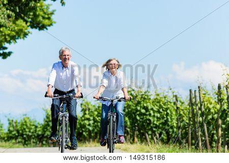 Senior woman and man using bike in summer in vineyard