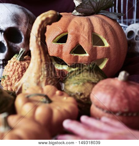 closeup of some different pumpkins, and some other Halloween ornaments, such as a bloody hand, some skulls or a carved pumpkin