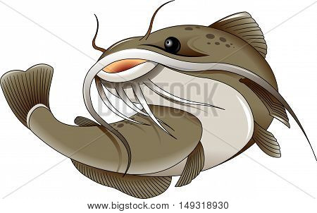the figure shows the fish catfish vector