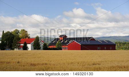 A typical Scandinavian farm near Oslo (Norway)