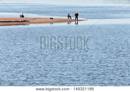 several men catching fish on the shore