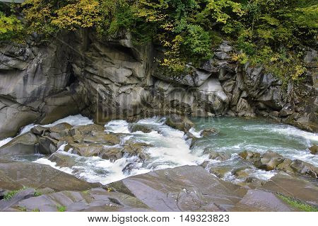 Prut river and its rapids in Carpathian mountains at rainy autumn day