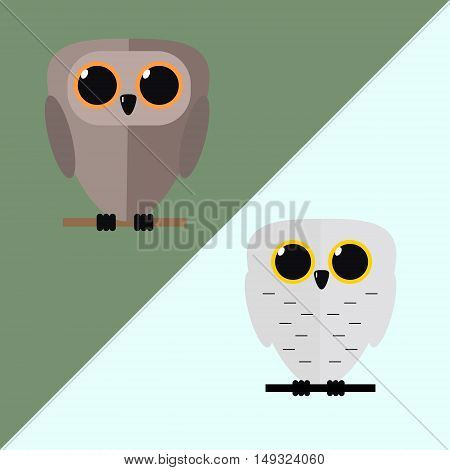 Owl bird on a branch. Isolated vector illustration of a flat