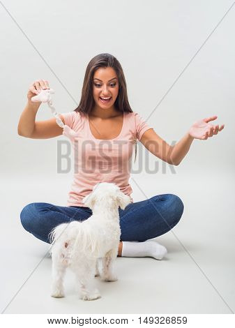 Happy female maltese and beautiful woman enjoy playing with toy and spending time together.