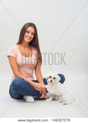 Portrait of cute female maltese with beautiful woman