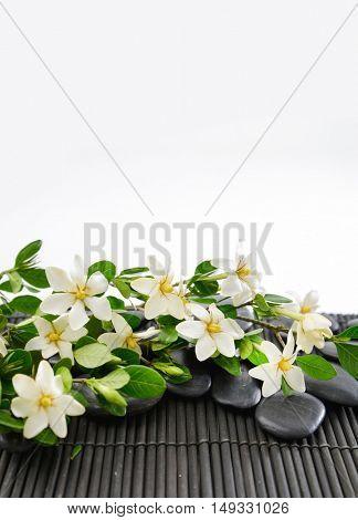 stones and gardenia on bamboo mat