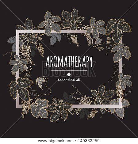 Elegant frame template with golden and black grapes fruit and leaves sketch. Aromatherapy series. Great for winery, grocery store, perfume design, cooking or gardening.