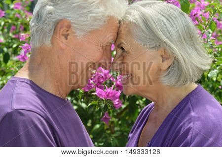 Portrait of beautiful senior couple outdoor in summer park