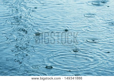 Raindrops creating concentric circles and droplets on a puddle water surface