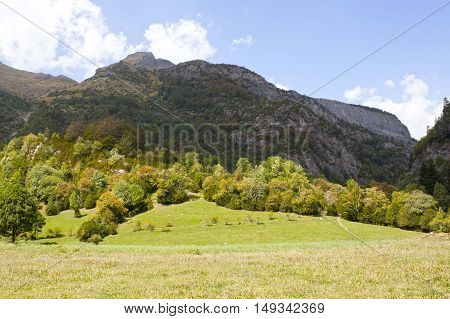 Mountain Range And Trees Below In The Hill, Pyrenees
