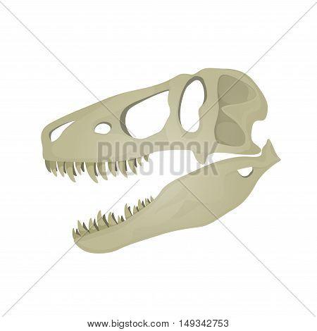 Vector illustration of Tyrannosaurus Rex skull on white background.