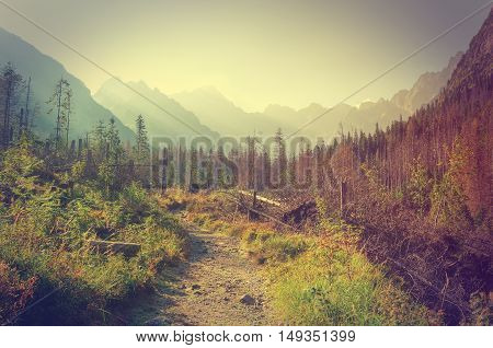 Summer mountain landscape in vintage style. Touristic trail with mountain peaks in the background.