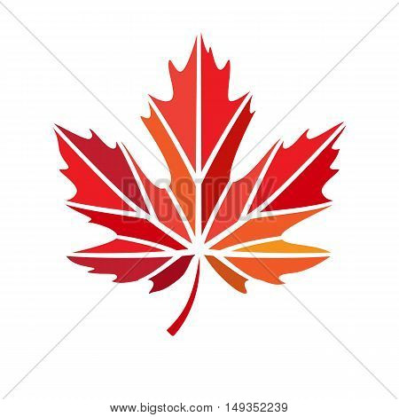 vector stylize logo with red maple leaf