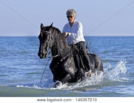 horsewoman and her horse in the sea