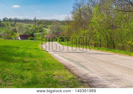 Landscape with empty meandering road through small village Petro-Svistunovo in central Ukraine