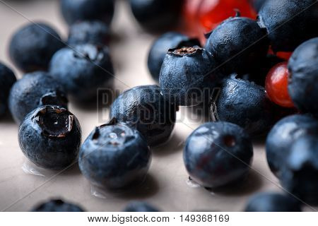 Blue and red berries close up photo
