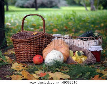The autumn harvest from the garden on a glade with autumn leaves. Shopping pumpkins and squash jam in a jar wicker basket