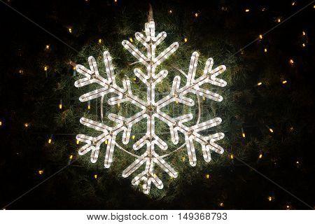 Lights on the christmas tree closeup photo