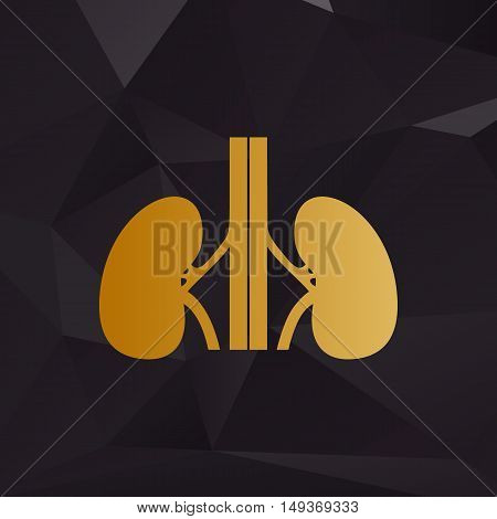 Human Kidneys Sign. Golden Style On Background With Polygons.