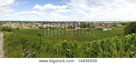 Landscape In Burgundy