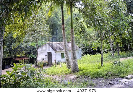 Typical small wooden house in Las Terrazas Biosphere Reserve - Cuba