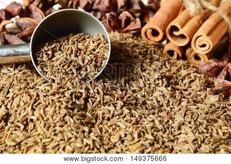 caraway seeds or kemmel (German name)  with Cinnamon  Helps to expel the stomach and intestines.