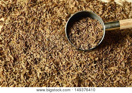 caraway seeds or kimmel (German name)  Helps to expel the stomach and intestines.