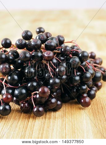 Sambucus nigra - Elderberry on the wooden