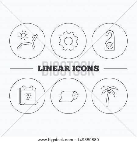 Palm tree, paper towel and beach deck chair icons. Clean room linear signs. Flat cogwheel and calendar symbols. Linear icons in circle buttons. Vector