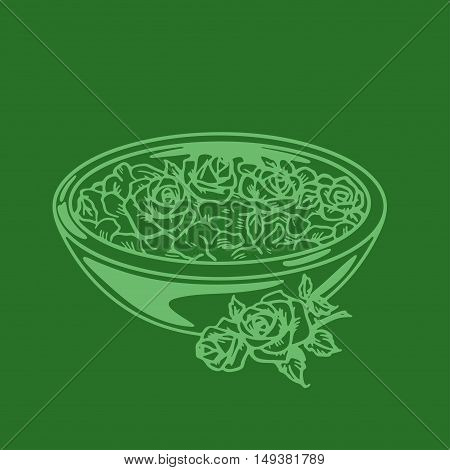 Spa flowers for aromatherapy Vector hand drawn image