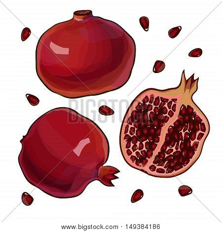 Whole and cut pomegranate icon set. Flat cartoon vector illustration.