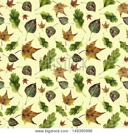Watercolor autumn leaves seamless pattern. Hand painted oak, maple, aspen fall leaves ornament isolated on yellow background. Botanical illustration for design, print, fabric.